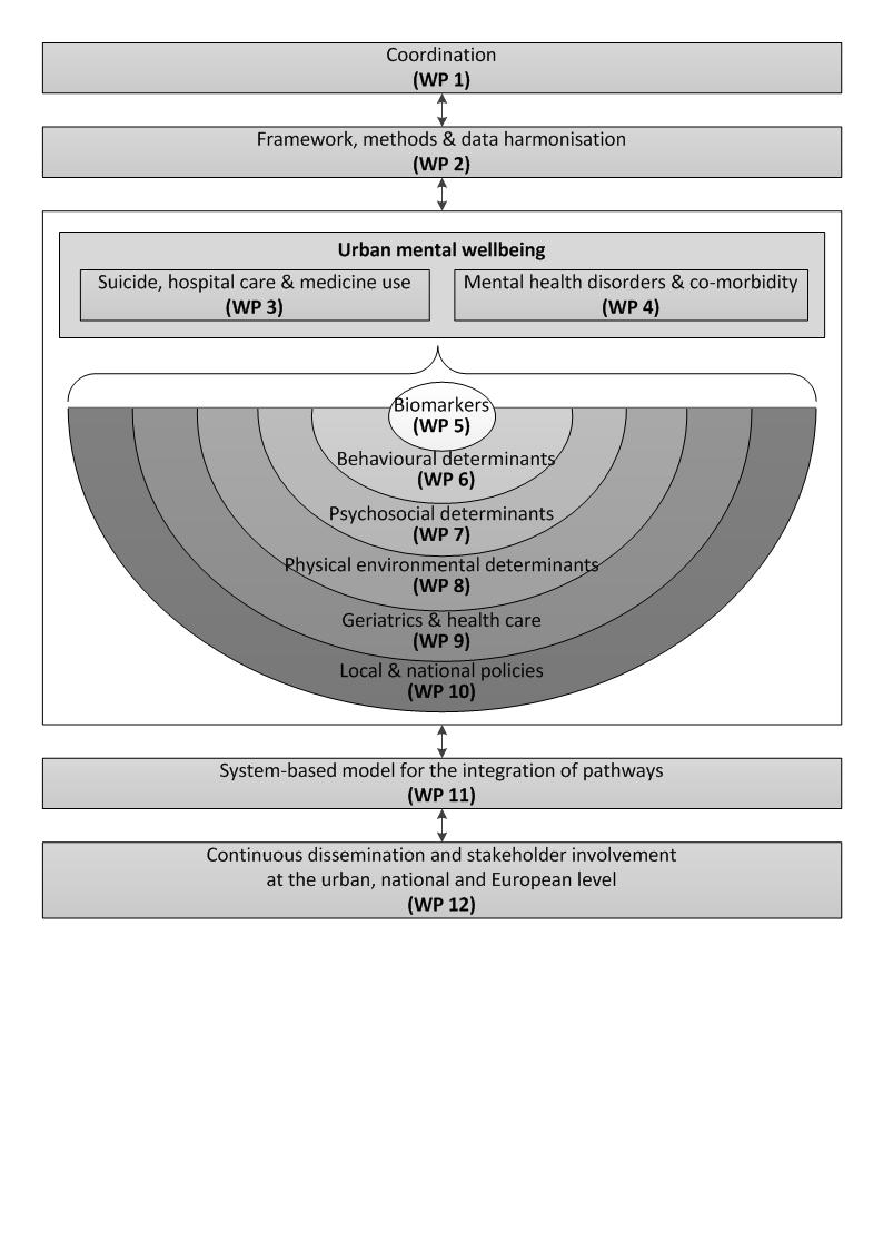 Interdisciplinary framework EURBANBRAIN - v3
